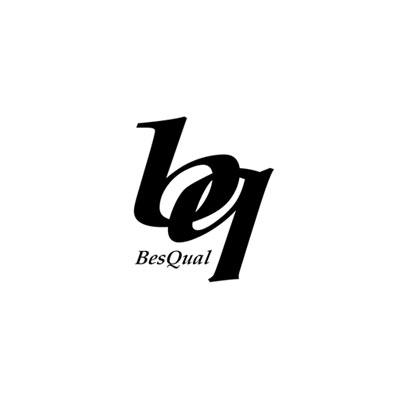LOGO-BESQUAL